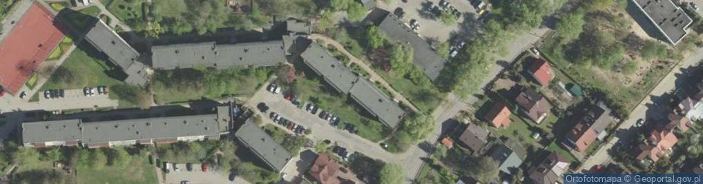 Zdjęcie satelitarne Dziesięciny 41