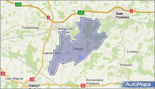 Mapa Polski Targeo, gmina Drelów - powiat bialski na mapie Targeo