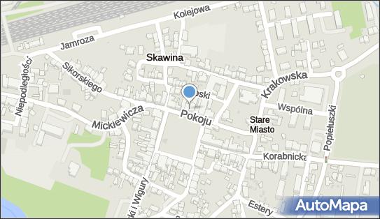 Bank Spółdzielczy w Skawinie, 32-050 Skawina, Rynek 19  - Bank BPS - Bankomat