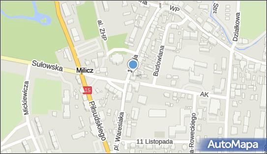 MONNET MONIKA PIETRZAK, Milicz, 1 Maja 29