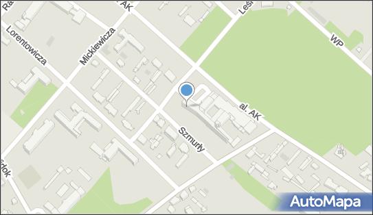 Szpital Uzdrowiskowy Nr 4 Dom Zdrojowy, 87-720 Ciechocinek - Hotel