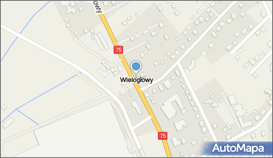 Wielogłowy (województwo małopolskie),  Wielogłowy - Inne