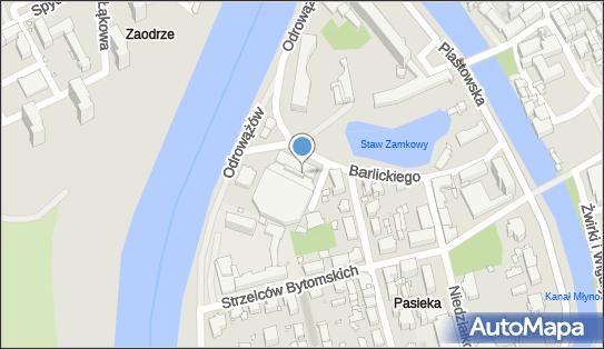 Lodowisko Toropol, Opole, ul. Barlickiego 13