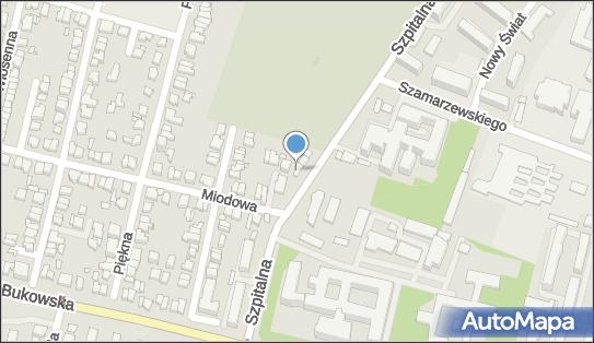 Casa Mia 1, 60-572 Poznań, Szpitalna 27ab  - Pizzeria