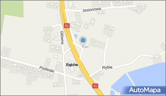 Pyszna Stajenka, 43-246 Bąków, Wiślańska 16  - Restauracja