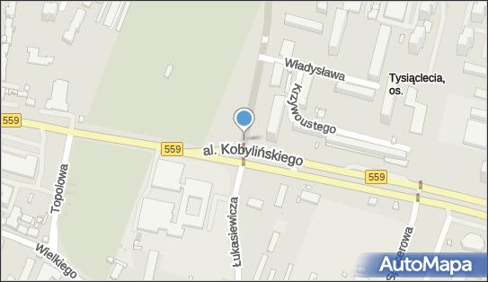 Trasa, Ścieżka Rowerowa, Płock