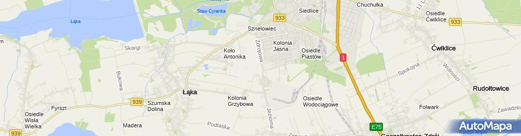 Zdjęcie satelitarne Zakład Poprawczy i Schronisko dla Nieletnich