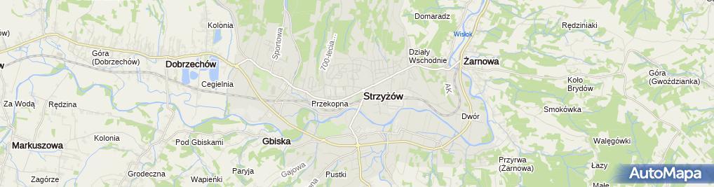 Zdjęcie satelitarne Bank Spółdzielczy w Strzyżowie