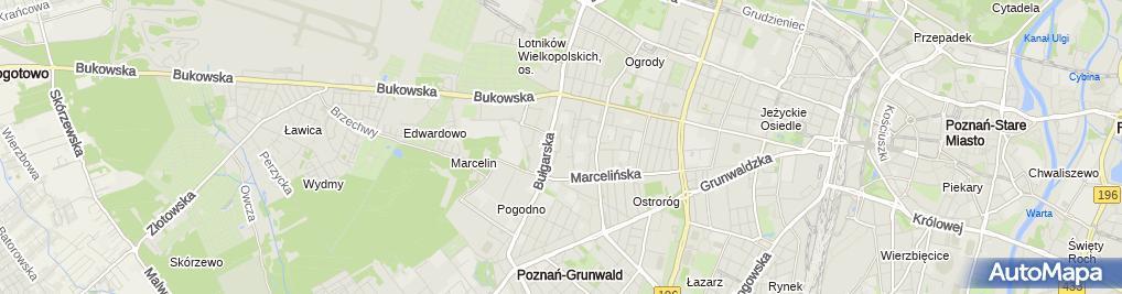 Zdjęcie satelitarne Biblioteka Raczyńskich - Filia nr 38