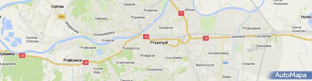 Zdjęcie satelitarne Terenowy Punkt Paszportowy