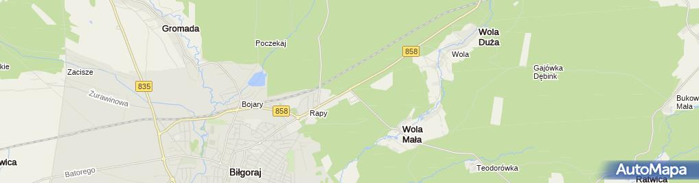 Zdjęcie satelitarne Sosna