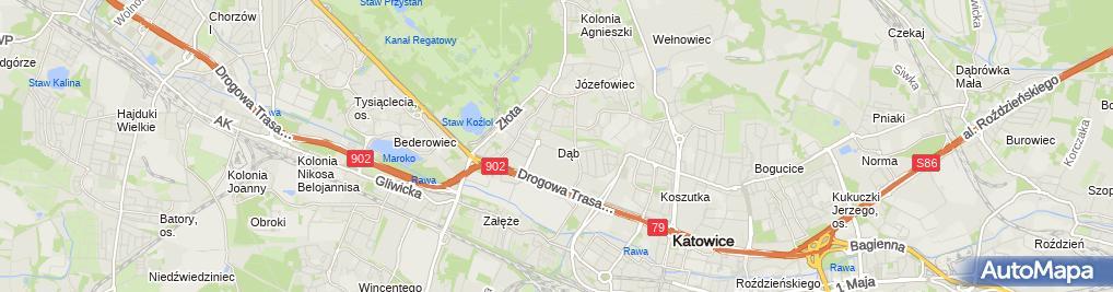 Zdjęcie satelitarne Dąb (dzielnica Katowic)