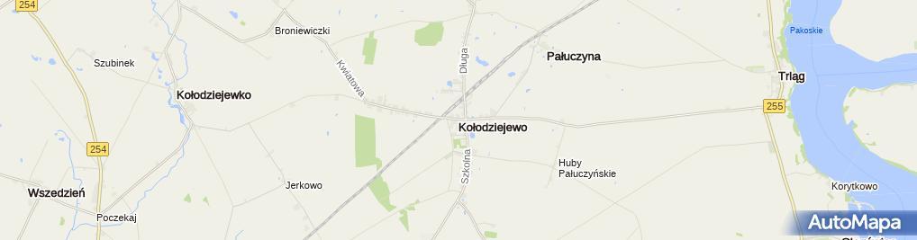 Zdjęcie satelitarne Kołodziejewo