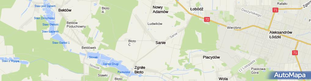 Zdjęcie satelitarne Sanie (województwo łódzkie)