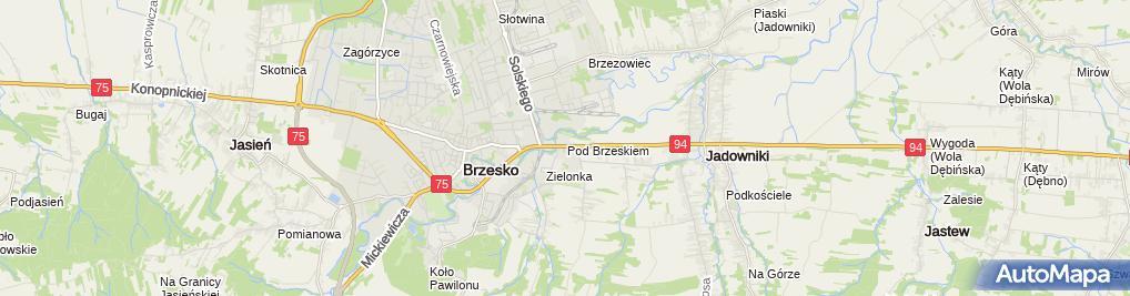 Zdjęcie satelitarne Inspekcja Transportu Drogowego
