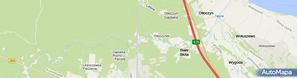 Zdjęcie satelitarne Zajazd Leśny