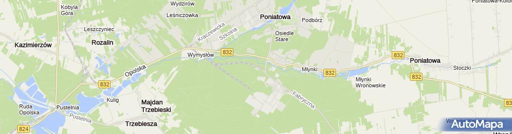 Zdjęcie satelitarne Poniatowa Wąsk. - Nadwiślańska Kolejka Wąskotorowa