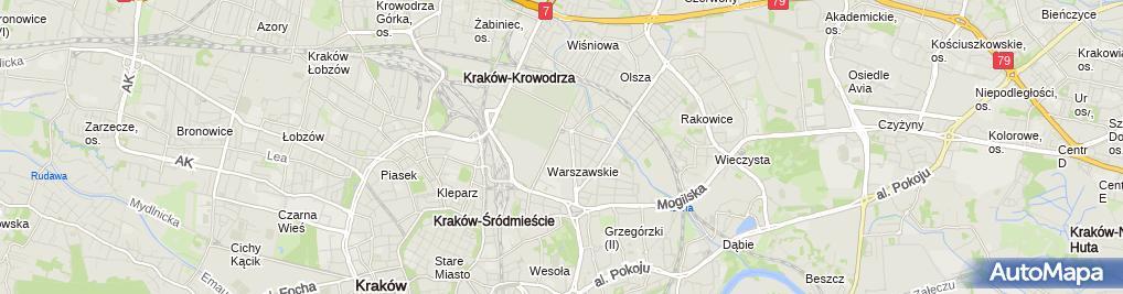 Zdjęcie satelitarne Diagnostyka