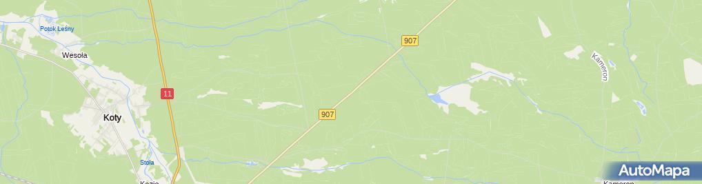 Zdjęcie satelitarne Parking Leśny