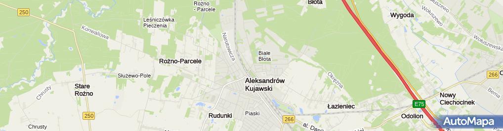 Zdjęcie satelitarne Sklep Ogrodniczy