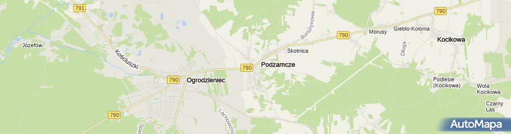 Zdjęcie satelitarne Pizzeria na rynku