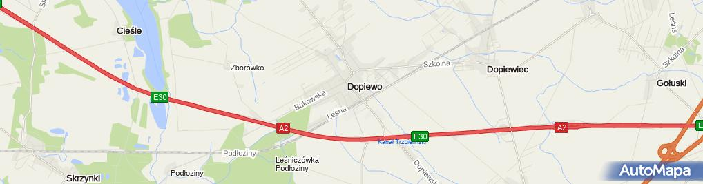 Zdjęcie satelitarne UP Dopiewo