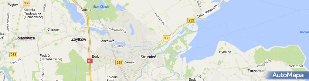 Zdjęcie satelitarne ZWM Strumet Sp. z o.o. - Ocynkownia