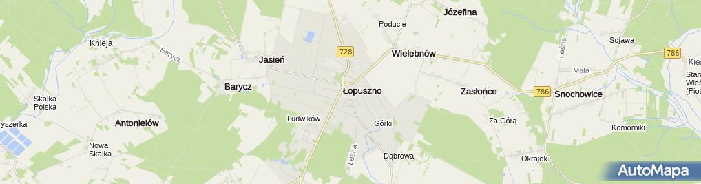 Zdjęcie satelitarne w ZS