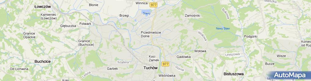 Zdjęcie satelitarne Bazylika Mniejsza Sanktuarium Matki Bożej Tuchowskiej