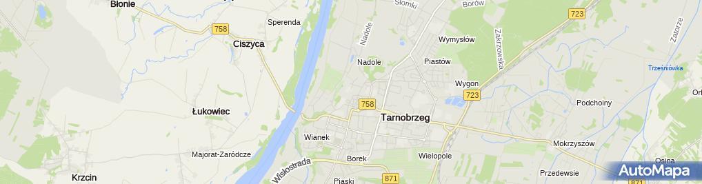 Zdjęcie satelitarne Sanktuarium Matki Bożej Dzikowskiej
