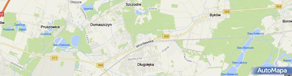 Zdjęcie satelitarne Selgros