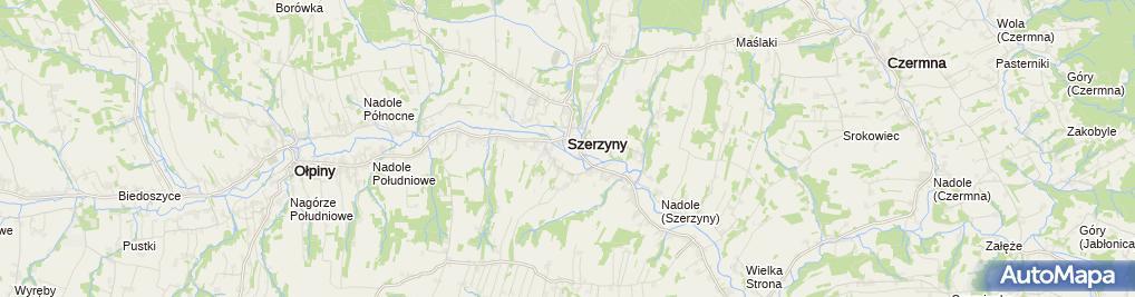 Zdjęcie satelitarne Ochotnicza Straż Pożarna Szerzyny