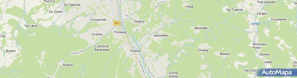 Zdjęcie satelitarne Wyciąg Palenica