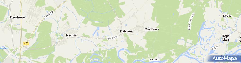 Zdjęcie satelitarne Dąbrowa Śrem Stara Szkoła