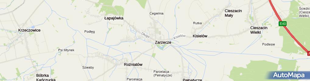 Zdjęcie satelitarne Zarzecze (powiat przeworski)-Pałac Dzieduszyckich