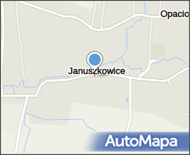 Dąb w Januszkowicach 2