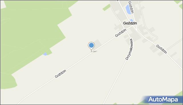 Goździn, Goździn, mapa Goździn