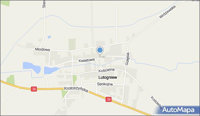 Lutogniew, Kwiatowa, mapa Lutogniew