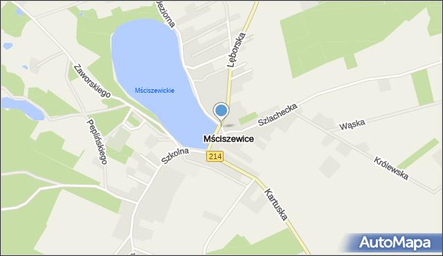 Mściszewice, Lewinowo, mapa Mściszewice