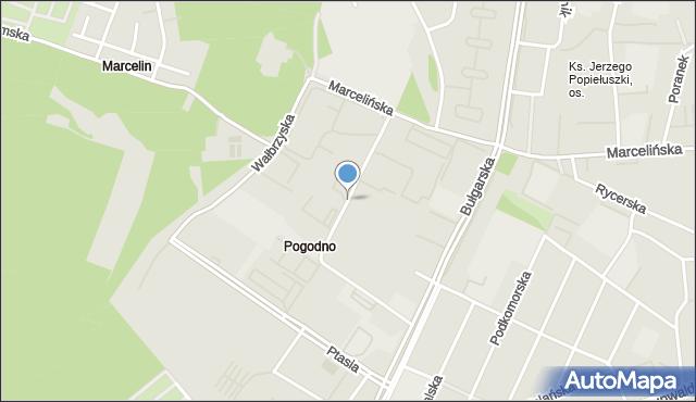 Poznań, Świerzawska, mapa Poznania