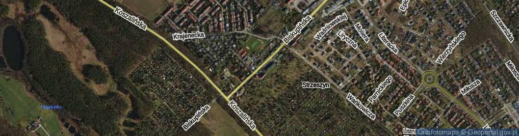 Zdjęcie satelitarne Biskupińska