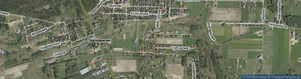 Zdjęcie satelitarne Cytrynowa ul.