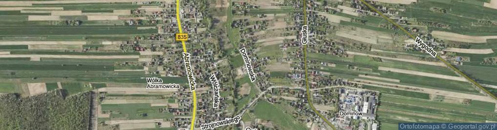 Zdjęcie satelitarne Dominowska ul.