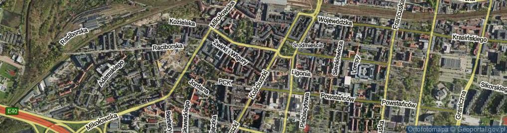 Zdjęcie satelitarne Drzymały Michała