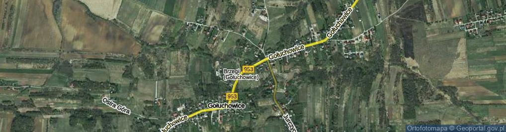 Zdjęcie satelitarne Gołuchowice