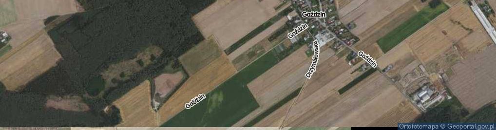 Zdjęcie satelitarne Goździn ul.