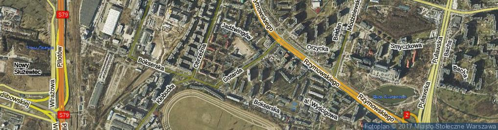 Zdjęcie satelitarne Gotarda