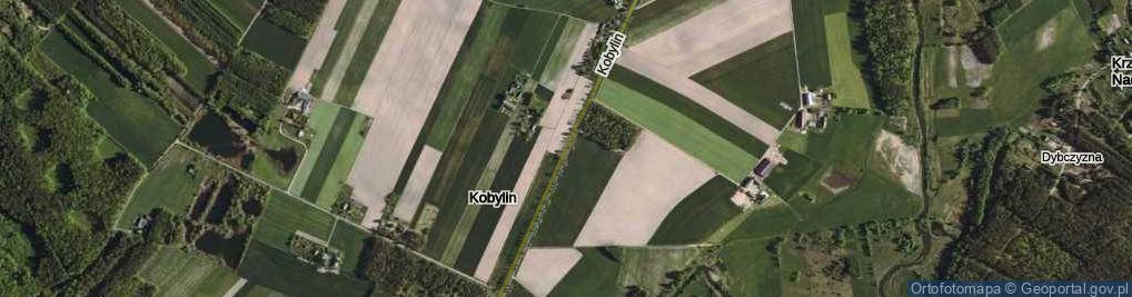 Zdjęcie satelitarne Kobylin ul.