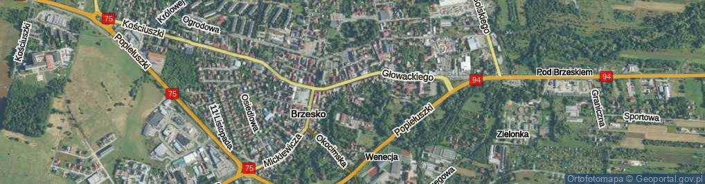 Zdjęcie satelitarne Kręta