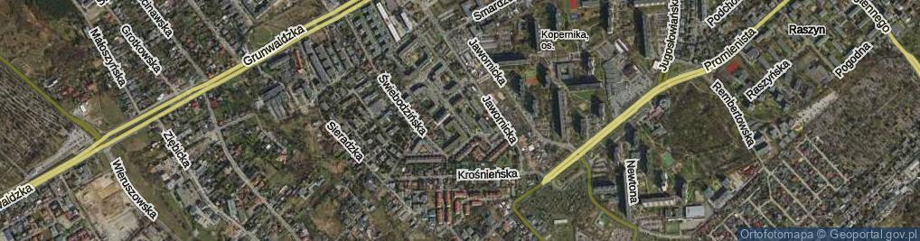 Zdjęcie satelitarne Międzyborska